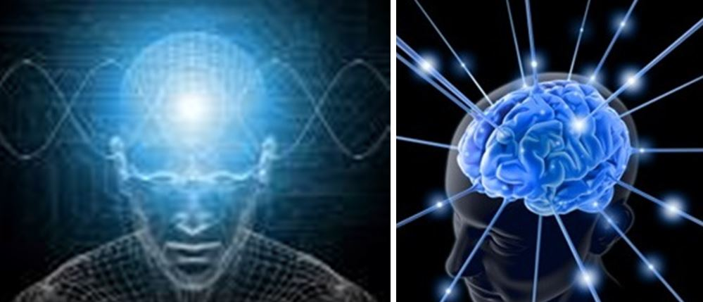 The Energy Bodies of Man, brain,