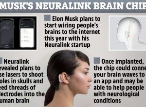 Mind Games: Elon Musk wants to connect your BRAIN to a computer